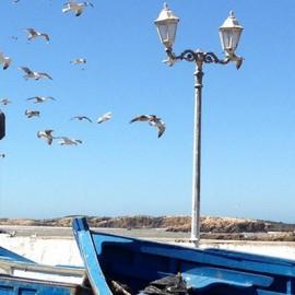 Un voyage inoubliable à Essaouira