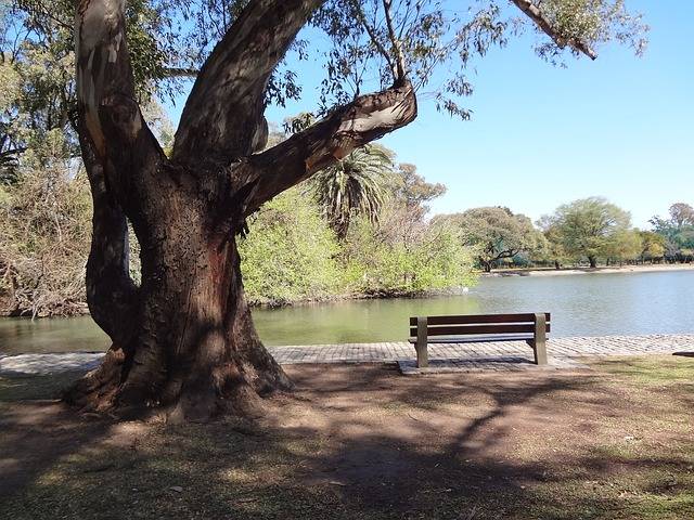 bosquets-palerme-argentine
